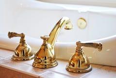 Χρυσή στρόφιγγα Στοκ Εικόνα