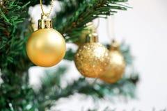 Χρυσή σφαίρα διακοσμήσεων στο πράσινο χριστουγεννιάτικο δέντρο Στοκ Εικόνα