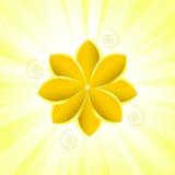 χρυσή σύσταση λουλουδιών διανυσματική απεικόνιση