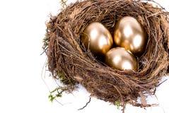χρυσή φωλιά τρία αυγών στοκ εικόνα με δικαίωμα ελεύθερης χρήσης