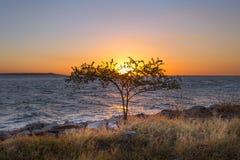 Χρυσή ώρα στην παραλία Στοκ Εικόνες