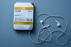 Χρυσή HDD μονάδα δίσκου 12 φυματίωση της Western Digital Στοκ Εικόνες