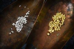 Χρυσοί και ασημένιοι κόκκοι στα κοχύλια χαλκού για την τήξη ενός κράματος ι Στοκ Εικόνες