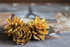 Χρυσοί κώνοι, Χριστούγεννα, σύσταση Στοκ εικόνες με δικαίωμα ελεύθερης χρήσης