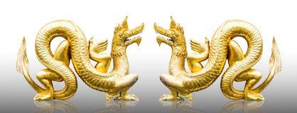 Χρυσοί δράκοι Στοκ φωτογραφία με δικαίωμα ελεύθερης χρήσης