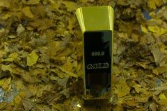 Χρυσοί φραγμοί στο χρυσό μετάξι στοκ φωτογραφία με δικαίωμα ελεύθερης χρήσης