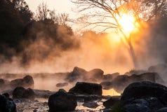 Χρυσός ατμός Στοκ φωτογραφίες με δικαίωμα ελεύθερης χρήσης