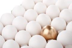 χρυσός αυγών στοκ φωτογραφία με δικαίωμα ελεύθερης χρήσης