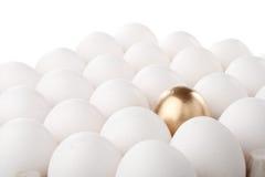 χρυσός αυγών στοκ εικόνες