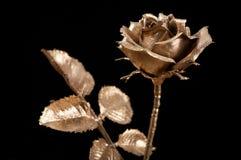 χρυσός αυξήθηκε Στοκ Φωτογραφίες