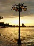 χρυσός βραδιού Στοκ φωτογραφίες με δικαίωμα ελεύθερης χρήσης
