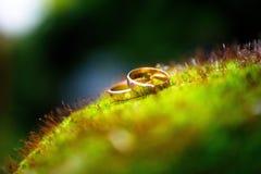 χρυσός γάμος δαχτυλιδιών στοκ εικόνες με δικαίωμα ελεύθερης χρήσης