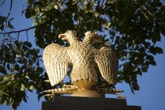 Χρυσός διπλός-διευθυνμένος αετός Στοκ Φωτογραφίες