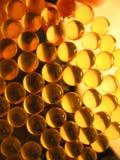 χρυσός καψών Στοκ εικόνες με δικαίωμα ελεύθερης χρήσης