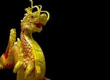 Χρυσός κινεζικός δράκος στο μαύρο υπόβαθρο Στοκ Εικόνες