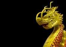 Χρυσός κινεζικός δράκος στο μαύρο υπόβαθρο Στοκ φωτογραφίες με δικαίωμα ελεύθερης χρήσης