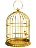 χρυσός κλουβιών Στοκ φωτογραφία με δικαίωμα ελεύθερης χρήσης