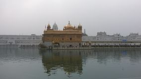 χρυσός ναός amritsar Ινδία Ινδία Στοκ Φωτογραφία