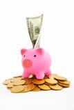 χρυσός νομισμάτων τραπεζών piggy Στοκ εικόνα με δικαίωμα ελεύθερης χρήσης