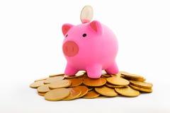 χρυσός νομισμάτων τραπεζών piggy Στοκ εικόνες με δικαίωμα ελεύθερης χρήσης