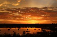 χρυσός ουρανός Στοκ Φωτογραφίες