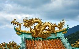 Χρυσός δράκος σε έναν θόλο κινεζικός ναός Στοκ Εικόνα