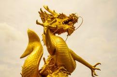 Χρυσός δράκος Στοκ Φωτογραφίες