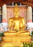 Χρυσός του Βούδα mai Ταϊλανδός choang Στοκ Εικόνα