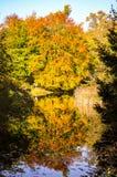 Χρυσός χρόνος φθινοπώρου σε ένα γερμανικό πάρκο Στοκ Φωτογραφίες