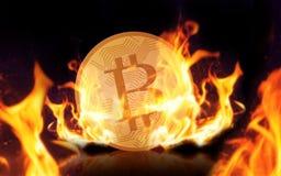 Χρυσός bitcoin στην πυρκαγιά πέρα από το μαύρο υπόβαθρο Στοκ εικόνες με δικαίωμα ελεύθερης χρήσης