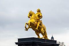 χρυσό άλογο στοκ εικόνες