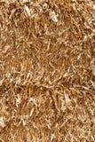 χρυσό άχυρο Στοκ εικόνα με δικαίωμα ελεύθερης χρήσης