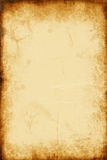 χρυσό έγγραφο διανυσματική απεικόνιση