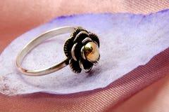 χρυσό ασήμι δαχτυλιδιών Στοκ φωτογραφίες με δικαίωμα ελεύθερης χρήσης