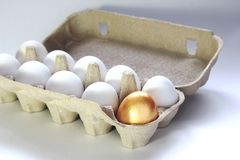 Χρυσό αυγό σε μια συσκευασία εγγράφου Στοκ φωτογραφία με δικαίωμα ελεύθερης χρήσης