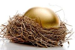 Χρυσό αυγό Στοκ εικόνα με δικαίωμα ελεύθερης χρήσης