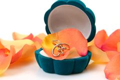 Χρυσό δαχτυλίδι Στοκ Εικόνες