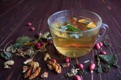 Χρυσό βοτανικό τσάι Στοκ Φωτογραφίες