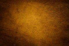 χρυσό δέρμα Στοκ φωτογραφία με δικαίωμα ελεύθερης χρήσης