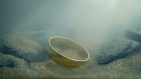 Χρυσό δαχτυλίδι στην κοίτη του ποταμού φιλμ μικρού μήκους