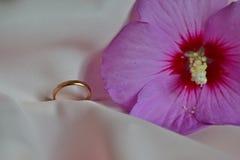 Χρυσό δαχτυλίδι στο ύφασμα μεταξιού δίπλα στο λουλούδι στοκ φωτογραφίες με δικαίωμα ελεύθερης χρήσης