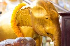 Χρυσό επικεφαλής άγαλμα ελεφάντων και κίτρινο λουλούδι στην Ταϊλάνδη templ Στοκ Φωτογραφίες