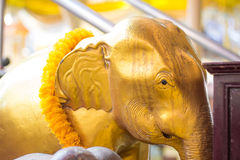 Χρυσό επικεφαλής άγαλμα ελεφάντων και κίτρινο λουλούδι στην Ταϊλάνδη templ Στοκ εικόνες με δικαίωμα ελεύθερης χρήσης