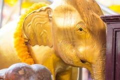 Χρυσό επικεφαλής άγαλμα ελεφάντων και κίτρινο λουλούδι στην Ταϊλάνδη templ Στοκ Φωτογραφία