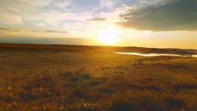 Χρυσό ηλιοβασίλεμα στον αγροτικό τομέα Χρυσός ήλιος ηλιοβασιλέματος βραδιού στο νεφελώδη ουρανό φιλμ μικρού μήκους
