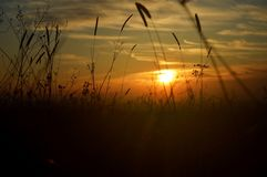 χρυσό ηλιοβασίλεμα στοκ φωτογραφία με δικαίωμα ελεύθερης χρήσης