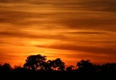 χρυσό ηλιοβασίλεμα Στοκ φωτογραφίες με δικαίωμα ελεύθερης χρήσης