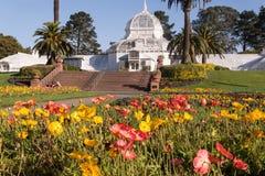 Χρυσό θερμοκήπιο πάρκων πυλών του Σαν Φρανσίσκο των λουλουδιών Στοκ Εικόνα