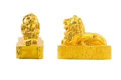 Χρυσό λιοντάρι με το ψαλίδισμα της πορείας Στοκ εικόνες με δικαίωμα ελεύθερης χρήσης