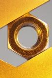 χρυσό καρύδι Στοκ Φωτογραφία
